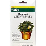 Sticky Stakes for Houseplants