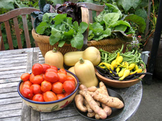 Organically Grown Food from Our Garden - for Ourselves & the Local Foodbank