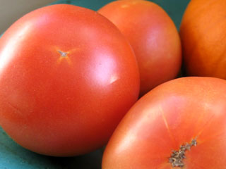 Late December Long Keeper Tomatoes