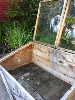 Cold Frame Empty of Summer Crops/Ready for Fall Crops