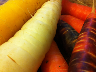 Beautiful, Imperfect, Delicious Carrots from a Local, Organic Farm