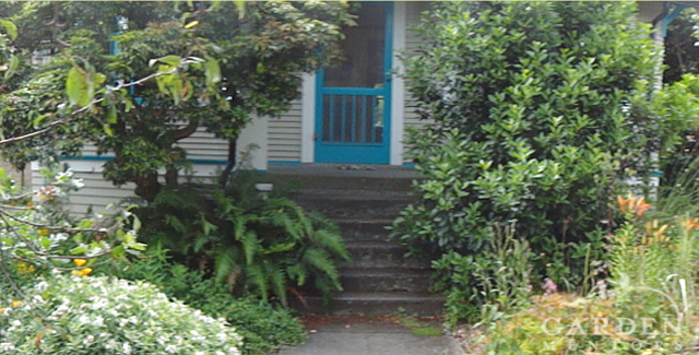 Front Entry Yard Before
