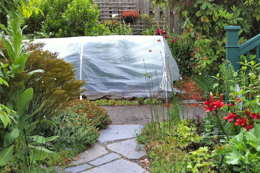 Plastic Covered Hoop House