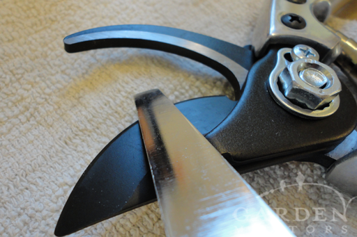 Pruning Guide: Sharpening Tools