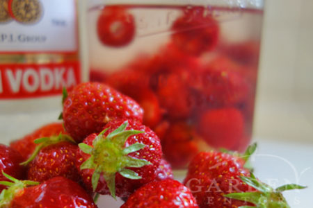 Strawberries & Vodka