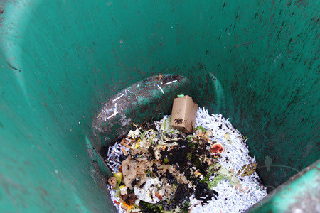 food waste composting bin contents