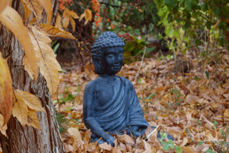 Buddha statue among fallen autumn leaves