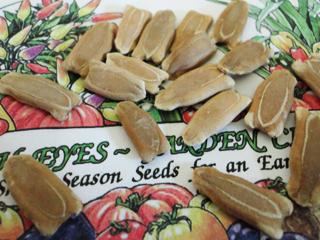 Birdhouse Gourd Seeds