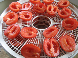 Tomatoes Prepped to Dry in a Nesco Dehydrator