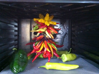 Decorative Pepper Braid & Whole Peppers Drying in Excalibur