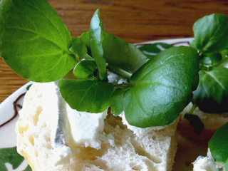 Peppery Watercress, cheese & sourdough bites