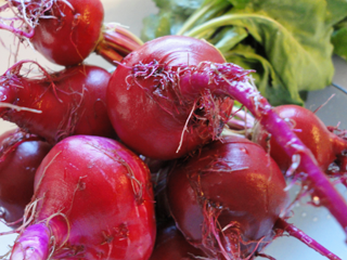 Homegrown Pest & Pesticide-free Chioggia beets