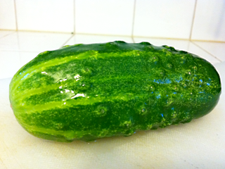 Pretty Tasty SpaceMaster Cucumber -- Or is it?