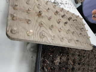 Seed Tray Punch Tool