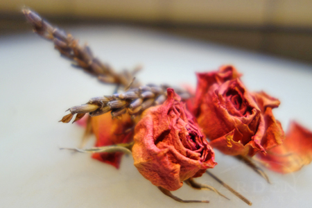 Dried rose and lavender buds