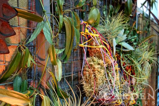 Container Garden at the 2013 Northwest Flower and Garden Show