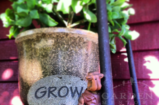 Grow with Garden Mentors