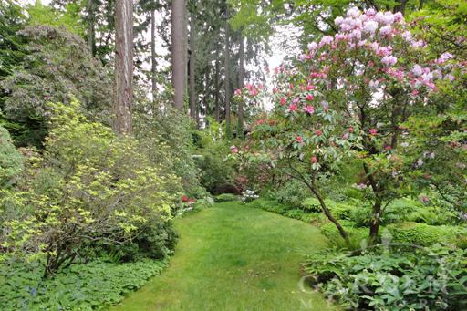 Dunn Gardens in Spring