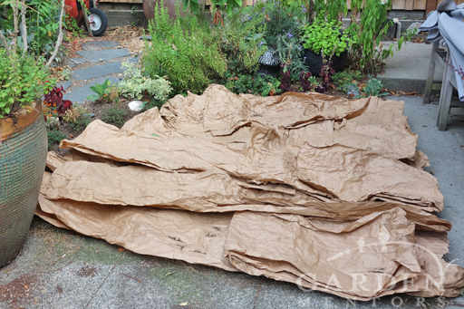 Smothering grass with recycled paper