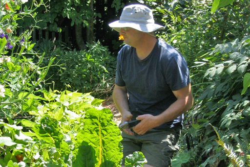Gardening Fresh Food to Battle Diabetes