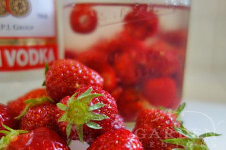 Strawberries & Vodka