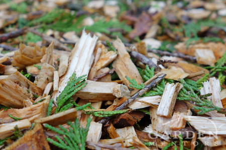 Cedar arborist chip material