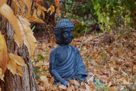 Buddha statue among fallen autumn leaves