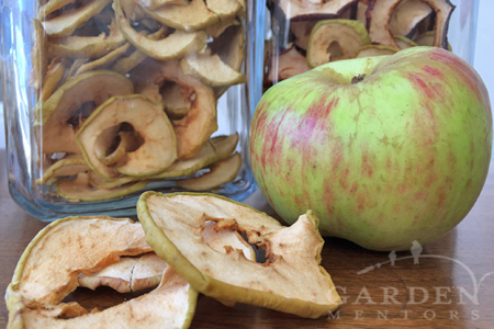 Dried apple chip recipe